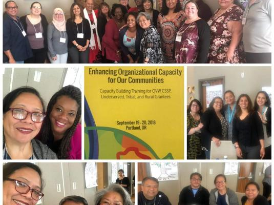2018 Enhancing Organizational Capacity for Our Communities